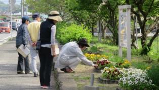 ⑩花壇コンクール審査①